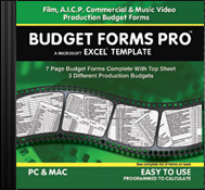 Budget Forms Pro Aicp Forms Excel Budgeting Templates